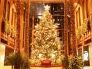 На новый год в Селятино будет новая новогодняя елка
