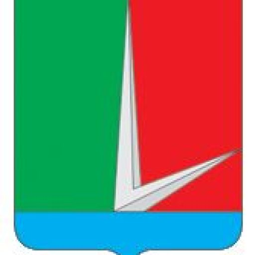 Избирательные округа городского поселения Селятино 2005 г.