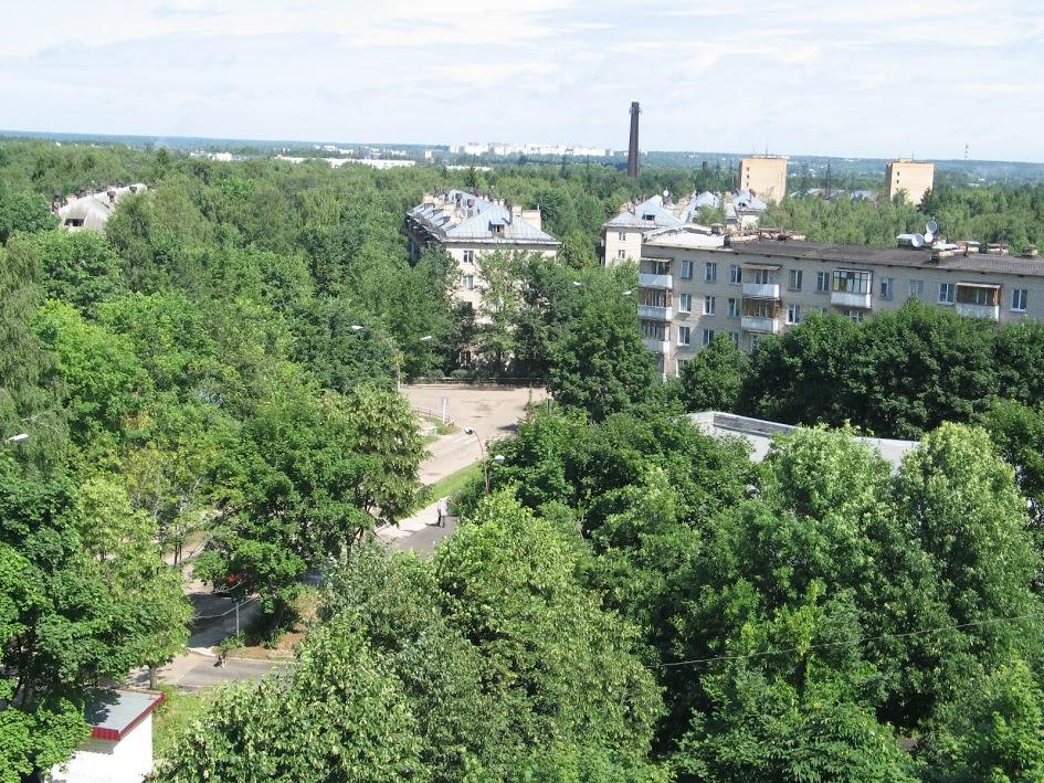 В Селятино посадят новый лес