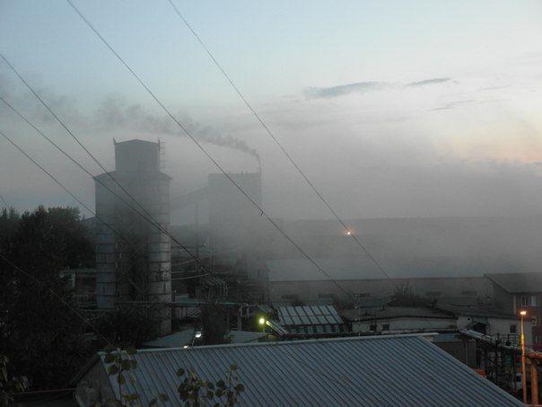 Завод в Селятино работал по поддельным документам и отравлял воздух