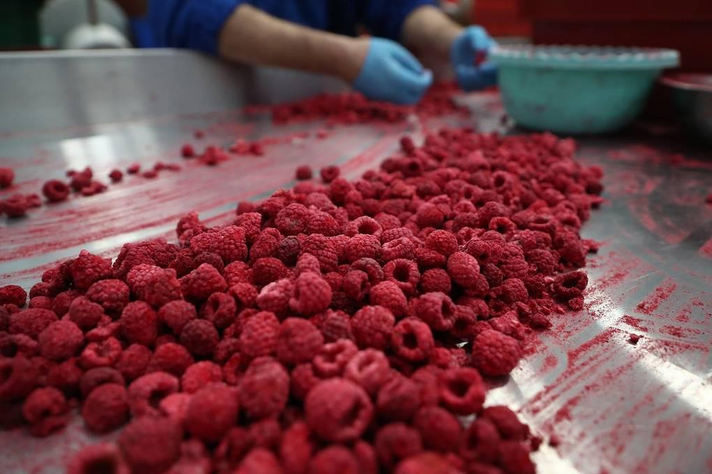 Как предприниматель из Селятино покорил кондитерский рынок с помощью орехов и сухофруктов